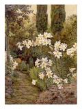 Consider the Lilies Giclée-tryk af Edith Helena Adie