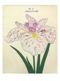 No. 5 Uji-No-Kawagiri Giclee Print