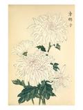 Karashishi Giclee Print by Keikwa Hasegawa