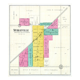 1894, Murrayville, Illinois, United States Giclee Print