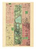 1867, New York City, Central Park Composite, New York, United States Reproduction procédé giclée