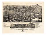 1882, Trinidad Bird's Eye View, Colorado, United States Giclee Print