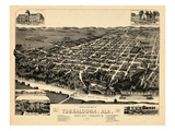 1887, Tuskaloosa Bird's Eye View, Alabama, United States Giclee Print