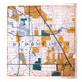 1925, Bloomfield Township, Birmingham, Michigan, United States Giclee Print