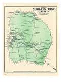 1878, Prince George County - District 9 - Surrats, Robeyston, Camp Spring, Allentown, Woodyard Giclee Print