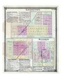1874, Lexington, McLean, Heyworth, Illinois, United States Giclee Print