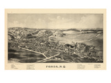 1889, Fonda Bird's Eye View, New York, United States Giclee Print