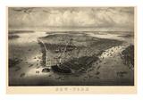 1851, New York City Bird's Eye View, New York, United States Giclee Print