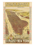 1891, New York City 1891 Bird's Eye View on Playbill, New York, United States Giclee Print