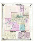 1876, Salisbury, Rothville, Triplett, Missouri, United States Giclee Print