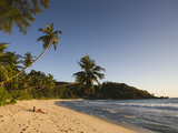 Tourist on the Beach, Anse Takamaka Beach, Mahe Island, Seychelles Photographic Print by Green Light Collection