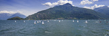 Sailboats in the Lake, Lake Como, Como, Lombardy, Italy Photographic Print by  Panoramic Images