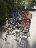Bicycles Parked on the Beach, Anse Source D'Argent, L'Union Estate Plantation, La Digue Island, ... Photographic Print by Green Light Collection
