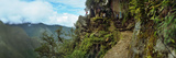 Inca Trail at the Mountainside, Machu Picchu, Cusco Region, Peru Photographic Print by  Panoramic Images