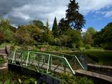 Bridge over the Ribbon Lake in the National Botanic Gardens, Glasvevin, Dublin City, Ireland Photographic Print