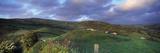 Sheep on Hillside, Combe Martin, North Devon, Devon, England Photographie par  Panoramic Images