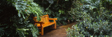 Bench in a Garden, Sunken Gardens, St. Petersburg, Florida, USA Photographic Print by  Panoramic Images