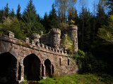 Ballysaggartmore Towers - a Victorian Folly,Near Lismore,County Waterford, Ireland Photographic Print