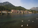 Swans in the Lake with Town in the Background, Lecco, Lake Como, Lakes Region, Lombardy, Italy Photographic Print by Green Light Collection