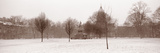 Bare Trees in Snow Storm, Charlotte Square, Edinburgh, Scotland Photographic Print by  Panoramic Images