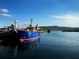 Fishing Harbour, Dingle Town, County Kerry, Ireland Photographic Print