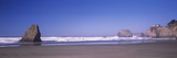 Surf on the Beach, Fort Bragg, Mendocino County, California, USA Photographic Print by  Panoramic Images