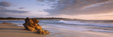 Rock on the Beach, South Africa Fotografisk tryk af Panoramic Images