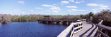 Tourists on a Pier, Anhinga Trail, Everglades National Park, Florida, USA Photographic Print by  Panoramic Images