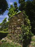 Ruins of Colonial Mission in a Park, Morne Seychellois National Park, Mahe Island, Seychelles Photographic Print by Green Light Collection