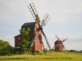 Wooden Windmills in a Field, Oland, Sweden Photographic Print