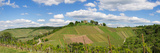 Grave Chapel in the Vineyards, Rotenberg, Stuttgart, Baden-Wurttemberg, Germany Photographic Print by Panoramic Images