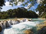 Waterfall, Agua Azul Cascades, Tulija River, Chiapas, Mexico Photographic Print by  Panoramic Images