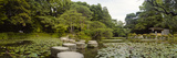 Stepping Stones in a Lake, Naka Shinen, Heian Jingu Shrine, Kyoto Prefecture, Kinki Region, Hons... Photographic Print by  Panoramic Images