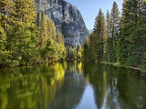 River Flowing Through a Forest, Merced River, Yosemite Valley, Yosemite National Park, Californi... Photographic Print
