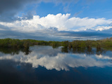 Reflection of Clouds on Water, Everglades National Park, Florida, USA Photographic Print by  Panoramic Images