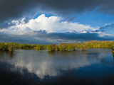 Reflection of Clouds in a Lake, Everglades National Park, Florida, USA Photographic Print by  Panoramic Images