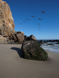 Rock Formations on the Beach, Point Dume State Beach, Point Dume, Malibu, Los Angeles County, Ca... Photographic Print