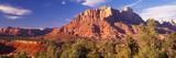 Panoramic Images - Canyon Surrounded with Forest, Escalante Canyon, Zion National Park, Washington County, Utah, USA - Fotografik Baskı