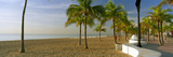 Palm Trees on the Beach, Las Olas Boulevard, Fort Lauderdale, Florida, USA Photographic Print by  Panoramic Images