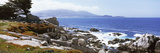 Rock Formations on the Coast, 17-Mile Drive, Monterey, Monterey County, California, USA Photographic Print by  Panoramic Images