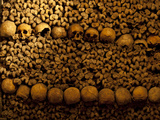 Close-Up of Stacked Bones in Catacombs, Paris, Ile-De-France, France Photographic Print