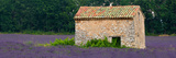 Stone Building in a Lavender Field, Provence-Alpes-Cote D'Azur, France Photographic Print by Panoramic Images