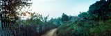 Dirt Road Passing Through an Indigenous Village, Chiang Mai, Thailand Photographic Print by  Panoramic Images