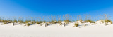 Sand Dunes on Gulf of Mexico, Orange Beach, Baldwin County, Alabama, USA Photographic Print by  Panoramic Images