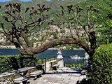 Garden at the Waterfront with a Town in the Background, Torno, Moltrasio, Lake Como, Lombardy, I... Photographic Print