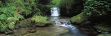Waterfall in a Forest, Watersmeet, North Devon, Devon, England Photographic Print by  Panoramic Images