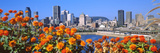 Blooming Flowers with City Skyline in the Background, Montreal, Quebec, Canada 2010 Photographic Print by  Panoramic Images