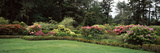 Lawn with Flowers in a Garden, Shore Acres State Park, Coos Bay, Oregon, USA Photographic Print by  Panoramic Images