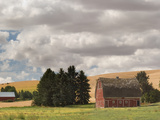 Old Barn under Cloudy Sky, Palouse, Washington State, USA Photographic Print by  Panoramic Images