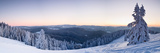 Snow Covered Trees on a Hill, Belchen Mountain, Black Forest, Baden-Wurttemberg, Germany Photographic Print by  Panoramic Images